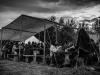 Krucze Manewry - 04 maj 2013 - 45