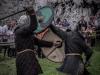 ogrodzieniec - 18 maj 2013 - 44